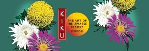 banner_kiku